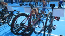 Triathlon European Cup Olsztyn 2019