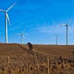 Zyski z wiatraków można przeznaczyć na odszkodowania