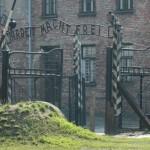 """Niemiecka TV musi przeprosić za """"polskie obozy zagłady"""""""