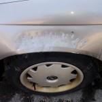 Przez kota psy pogryzły auto