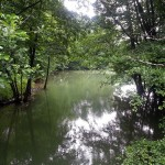Rozpoczęto się koszenie dna rzeki Łyny