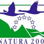 Jak sprawnie zarządzać naturą?