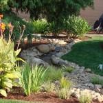 Praca w ogrodzie może wyleczyć z wielu chorób