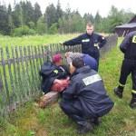 Odnaleźli 78-latkę, nadal policja szuka Tomasza Skindela