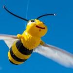 Pszczoła i miód