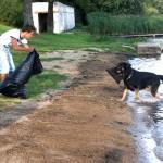 Wspólne sprzątnie plaży nad jeziorem Jemiołowo w Olsztynku