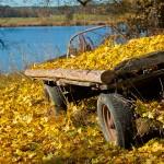Wczesna jesień dokucza bezdomnym