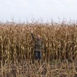 Na Warmii i Mazurach trwają żniwa kukurydziane