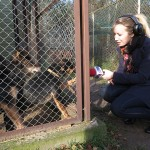 Z wizytą w schronisku dla zwierząt
