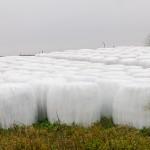 Rolnicy dowiedzą się, jak wykorzystać odnawialne źródła energii