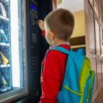Czy niezdrowa żywność zniknie ze szkolnych sklepików?