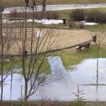 Park Kusocińskiego (jak zwykle) zalany