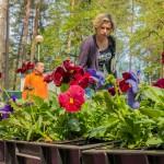 Olsztyński ODR zaprasza na targi rolnicze