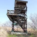 Spłonęła wieża widokowa w rezerwacie Jeziora Drużno
