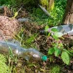 W lasach przybywa odpadów. Kolejni leśni śmieciarze zatrzymani
