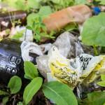"""Puszki, butelki i części samochodowe… Oto """"skarby"""" znalezione wokół Jeziora Trackiego"""