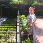 Zakładmy ogródek