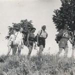 Warmińsko-Mazurski Oddział PTTK