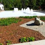 Z fontanny w Elblągu zniknie spieniona woda