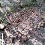 Arsenał niewybuchów w lesie koło Ełku