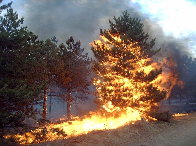 Pożar w Ełku