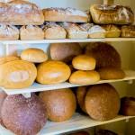 Żywność powinna być dobrze opisana. Piekarze i cukiernicy uczą się znakowania wyrobów
