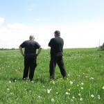 Bezprawnie zasiewają pola i pobierają unijne dopłaty