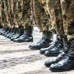 Wojsko pomaga szukać martwych dzików