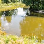 Tragedia w rzece Pasłęce