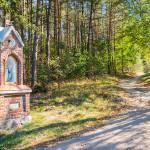 Chroniły przed pożarami, chorobami czy zarazą. Wystawa świątków z warmińskich kapliczek w zamku  w Olsztynie