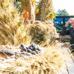 Dożynki powiatu oleckiego. Rolnicy dziękowali za zebrane plony