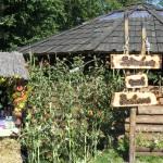 Biuro Podróży Radia Olsztyn w gminie Milejewo