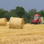 Gigantyczne straty z powodu suszy. Warmińsko-mazurskie wśród najbardziej poszkodowanych regionów