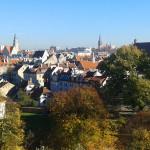 Jak poprawić jakość powietrza w Olsztynie? O tym rozmawiali politycy SLD