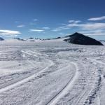 Naukowcy z UWM ruszają na Antarktydę. Badania potrwają ponad trzy miesiące