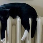 Czy w Elblągu będzie nowe źródło ciepła?