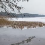 Wspólnymi siłami uratowali psa przymarzniętego do tafli jeziora