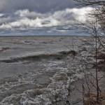 Wysoki stan wód na Żuławach Elbląskich. Służby zapewniają: nie ma zagrożenia powodzią