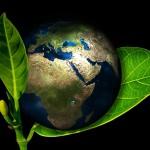 Dzień Ziemi w Dobrym Mieście