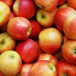 UOKiK zainteresował się cenami masła i jabłek