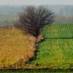 Zagrożone ubóstwem Warmia i Mazury wyludniają się