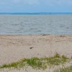 Służby sanitarne wyznaczyły 5 kąpielisk w powiecie elbląskim. Uwaga, na plażach tych nie ma ratowników!