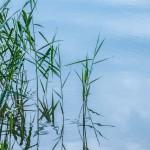 W jeziorze Maróz utonął 68-letni wędkarz