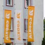 GDDKiA szuka firmy, która wykona projekt i zbuduje nową trasę S7
