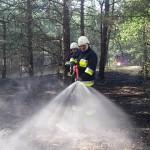 W lasach obowiązuje najwyższy stopień zagrożenia pożarowego