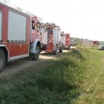Tysiąc indyków zginęło w pożarze olbrzymiego kurnika