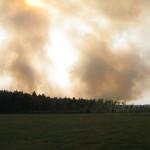 Rośnie zagrożenie pożarowe w lasach na Warmii i Mazurach
