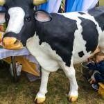 W Olsztynie trwa święto sera