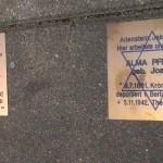 Kontrowersyjne upamiętnienie żydowskiego fotografa