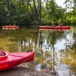 Turyści niszczą rezerwat Krutyni. Służby ochrony środowiska zapowiadają kontrolę
